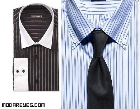 Tipos de cuellos de camisas
